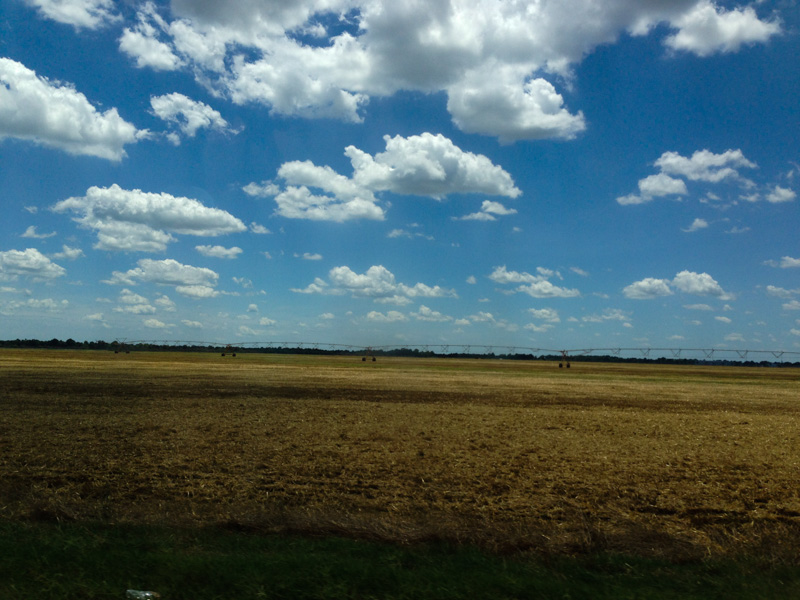 The Mississippi Delta on the way to Indianola